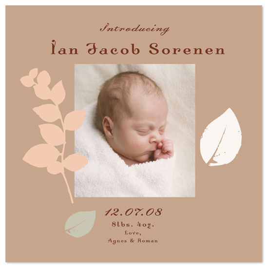 birth announcements - Autumn Pastels by Words & Objects
