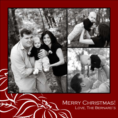 holiday photo cards - Poinsetta by Katie Mangieri