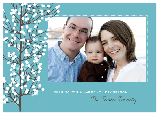 holiday photo cards - winter branches by n+s