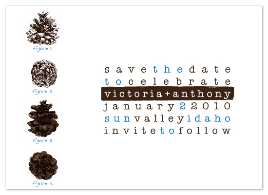 save the date cards - Pine Cone Diagram by Megan Lehan