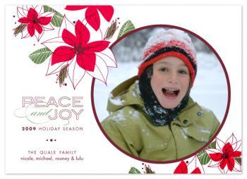 Poinsettia Peace & Joy