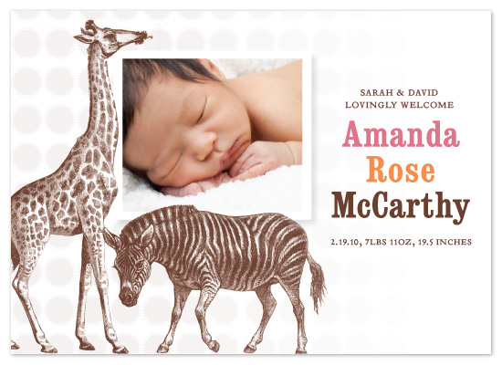 birth announcements - Safari Girl by Allison Grynberg