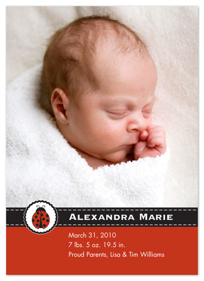 birth announcements - Little Ladybug by TanFish