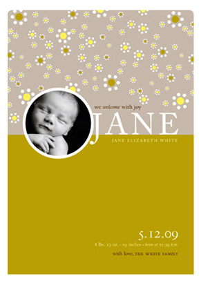 birth announcements - daisies by pottsdesign