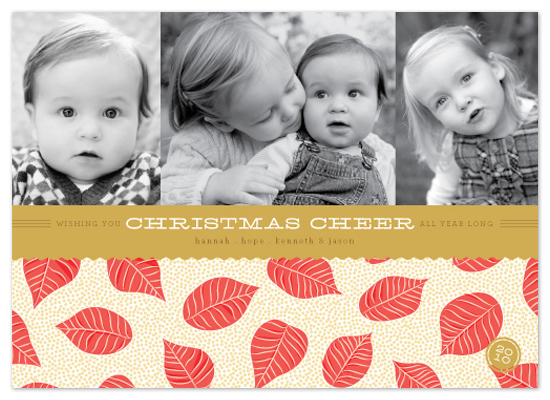 holiday photo cards - poinsettia petals by Design Lotus