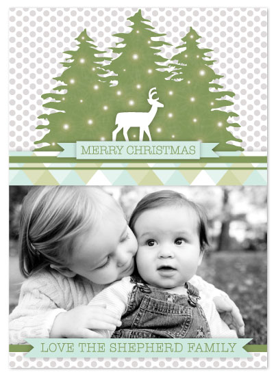 holiday photo cards - Modern Forest by Mariah DeMarco