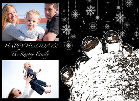 holiday photo cards - Birds by Danielle  Kasony