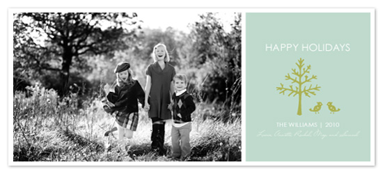 holiday photo cards - Outdoor Holiday by Lina Goldberg