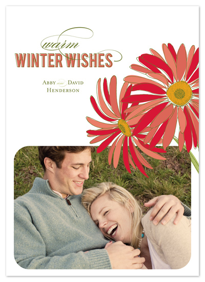 holiday photo cards - holiday daisies by Carrie Eckert