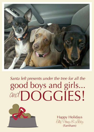 holiday photo cards - Christmas is for Doggies too by Lulu Creates