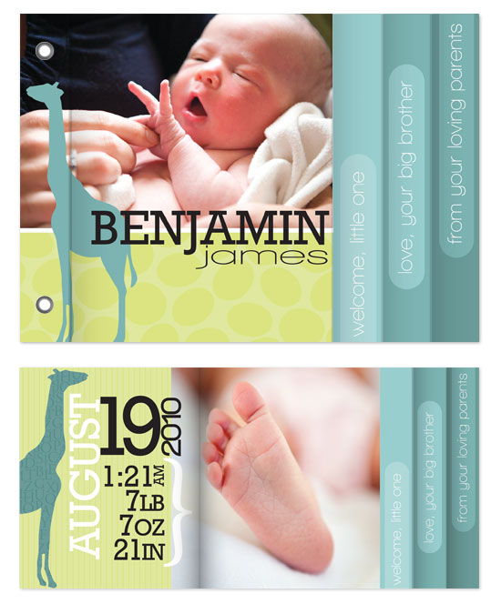 minibook cards - Modern Giraffe Baby Boy by Heidi Stock Design