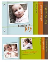Bold Bundle of Joy by Natalie Navales