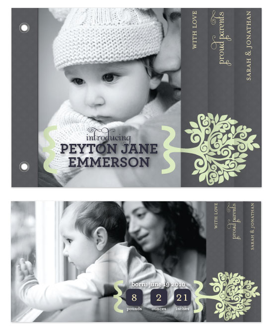 minibook cards - Growing Family Tree by Bourne Paper Co.