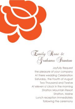 Bold Orange Rose