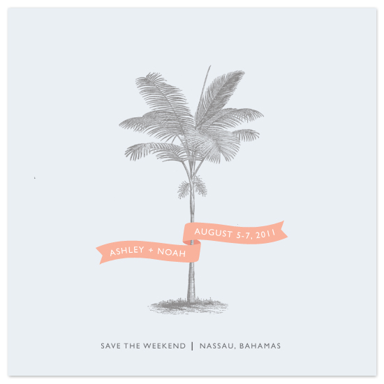 save the date cards - Palm by Lauren Chism