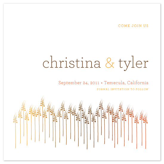 save the date cards - Through the fields by StudioTM
