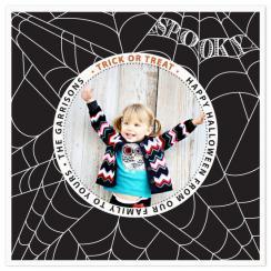 spooky web