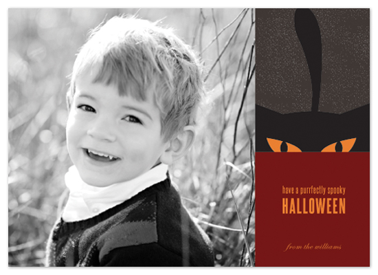 cards - Purrfectly Spooky Halloween by Liza Williams