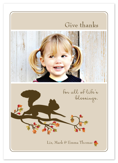 cards - Squirrel and Nut by Denise Anne