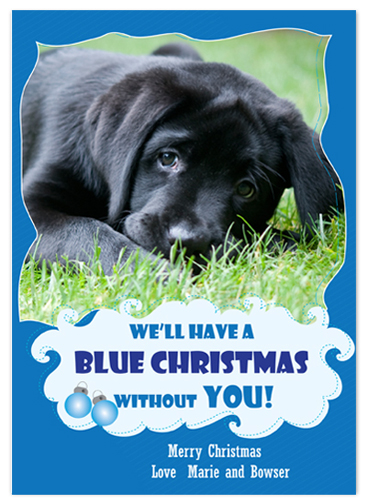 holiday photo cards - Bowser Blue Christmas by Gayletrini