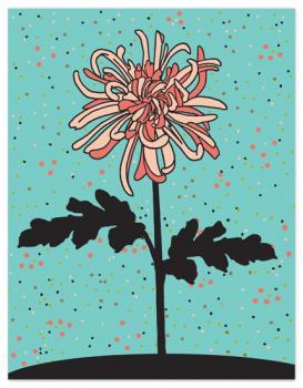 Bonjour chrysanthème