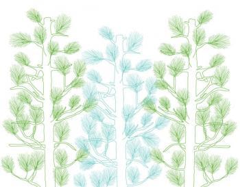 Whispy Pines