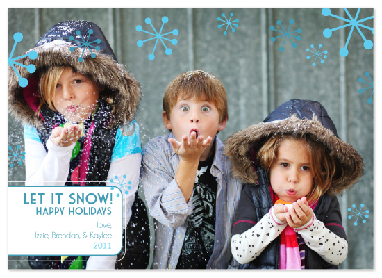 holiday photo cards - Let It Snow by Bloom Art and Design
