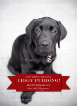 Figgy Pudding by Kelli Despain