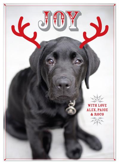 holiday photo cards - Joy of Best Friend by Neeti Kapadia