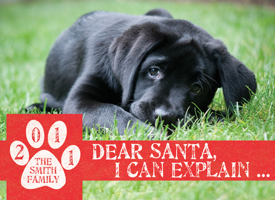 holiday photo cards - Dear Santa, I can Explain ... by Papersaurus Creative
