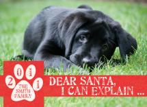 Dear Santa, I can Expla... by Papersaurus Creative
