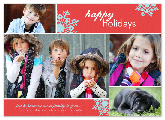 holiday photo cards - family fun by Neeti Kapadia