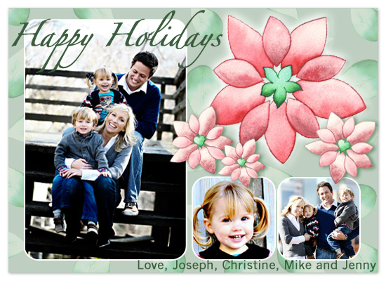 holiday photo cards - Christmas Flowers by Traci Bixby