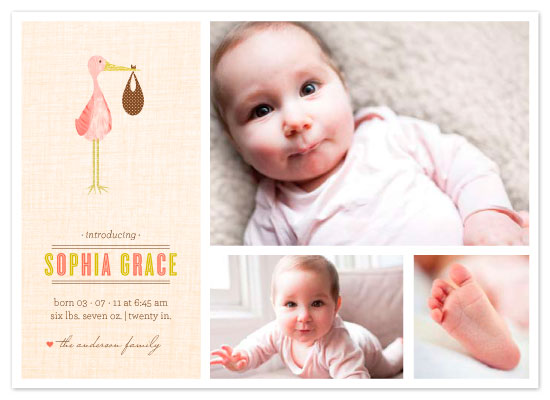 birth announcements - Sweet Stork by Three Kisses Studio