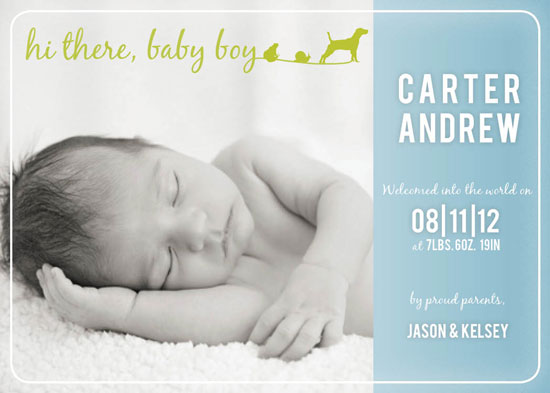 birth announcements - Frogs, Snails & Puppy Dog Tails by ardentGOODS