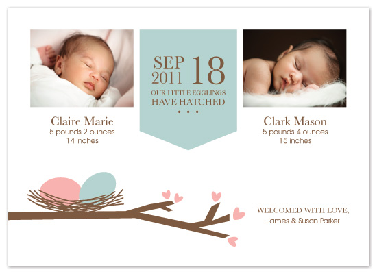 birth announcements - Our Little Egglings by Designs by Yu