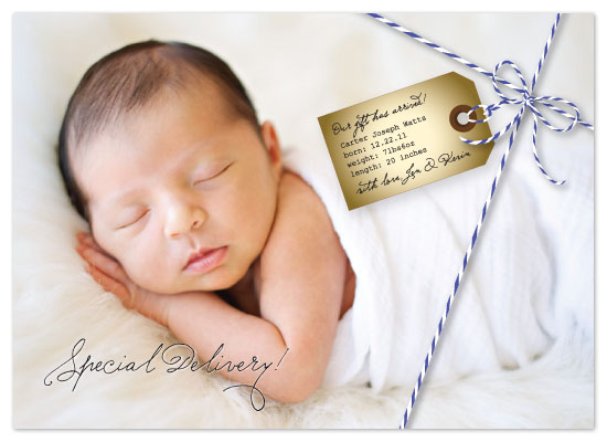 birth announcements - Special Delivery! by Bleu Collar Paperie