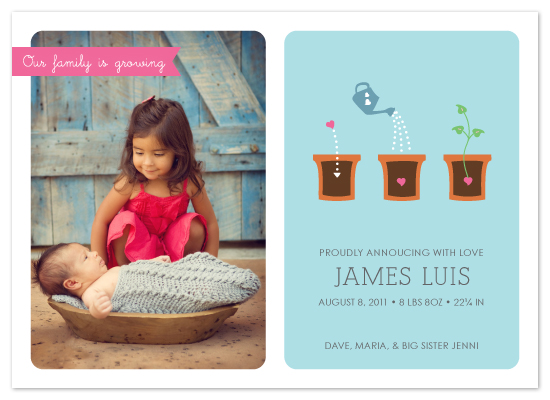 birth announcements - How Love Grows by roxanne chang