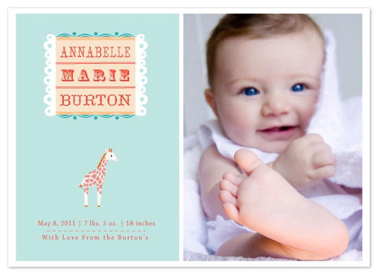 birth announcements - Little Giraffe by lb