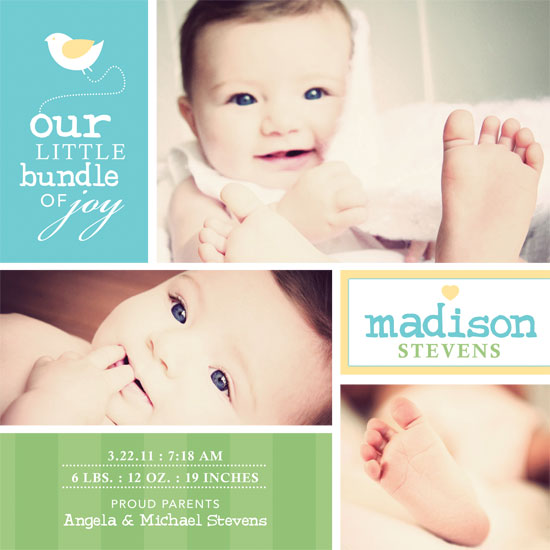 birth announcements - Birdie Bundle of Joy by Sonya Baldwin