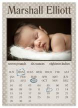 Calendar by The Picture Portal