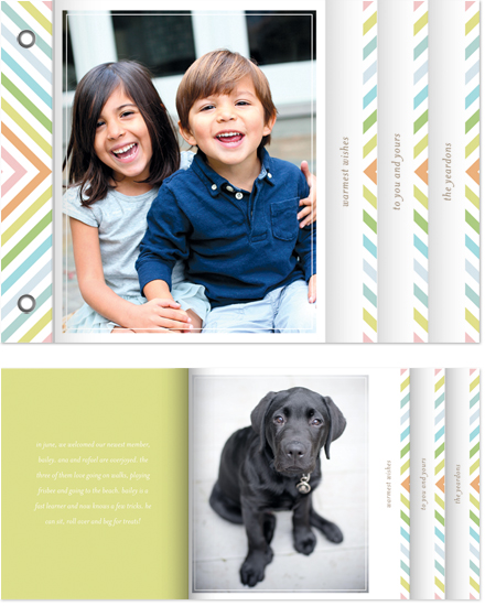 cards - chevron rainbow by nocciola design
