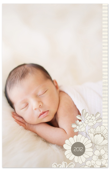 journals - Organic Baby by vinnie pearce