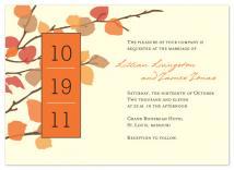 Autumn Romance  by Melissa Albers