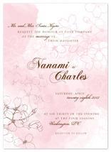 Floating Cherry Blossom... by Monika Natius