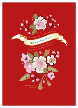 Sakura_Cotton_plan