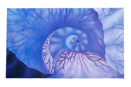 art prints - Iris by Alyssa Hunt