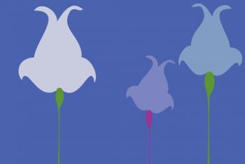 Tulip Tussle