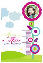Grows and grows by MK