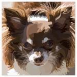 PET ME PLEASE! by JOHANNA PURMORT